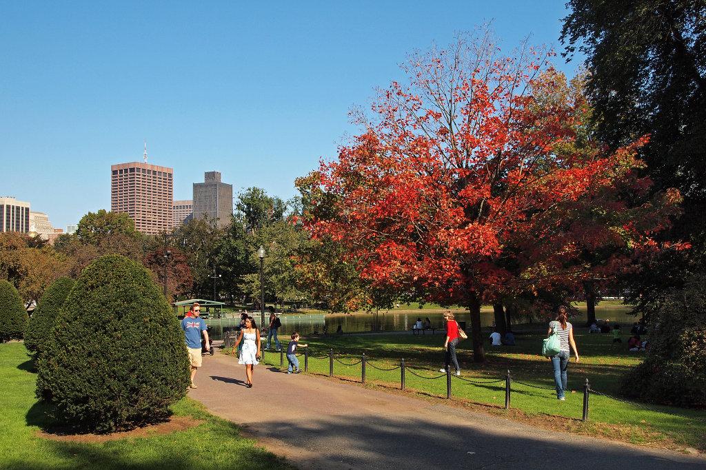 Public Garden in fall