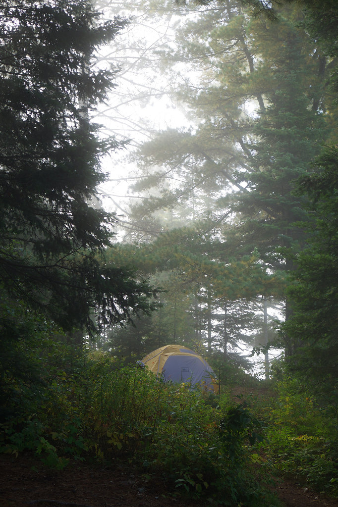 Misty moods at the camp site
